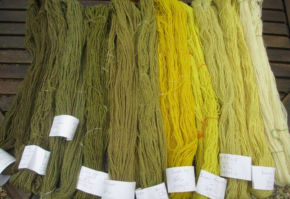 Skeins of my handspun yarn dyed and labelled.