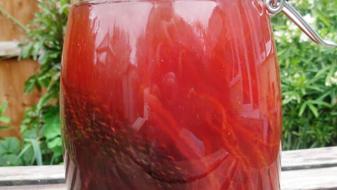 Yarn and madder root in solar dye pot 1