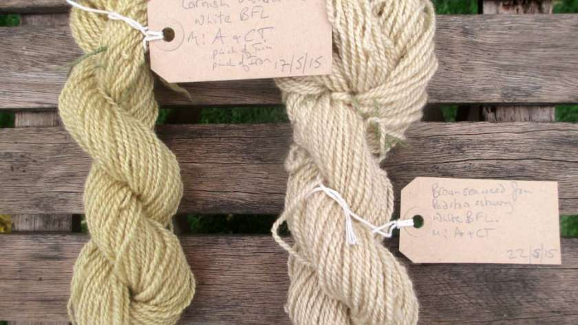 Skeins of handspun yarn dyed with Cornish Valerian and brown seaweed