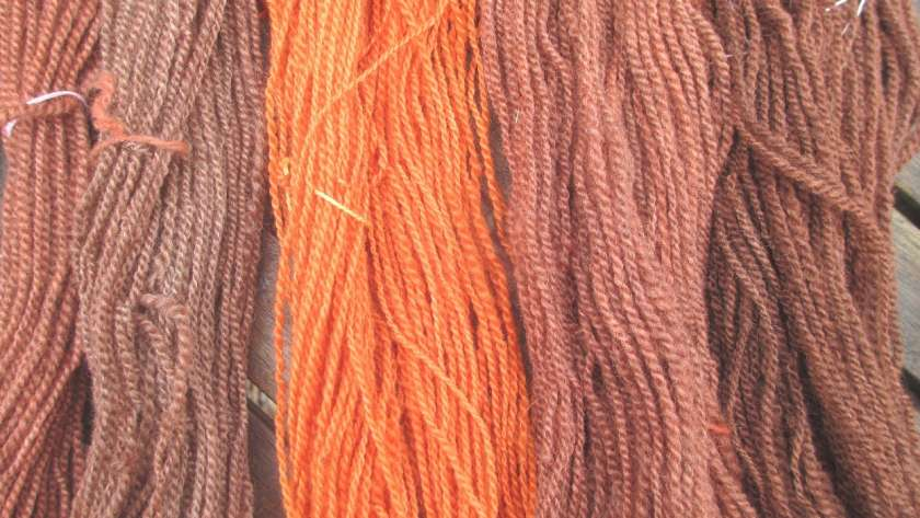Yarn colours from solar dye pot 2