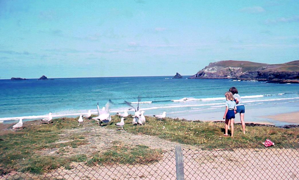 Feeding gulls on the cliffs in front of Parsons Hut in the early 1960's (c) Madeleine Jude Ltd