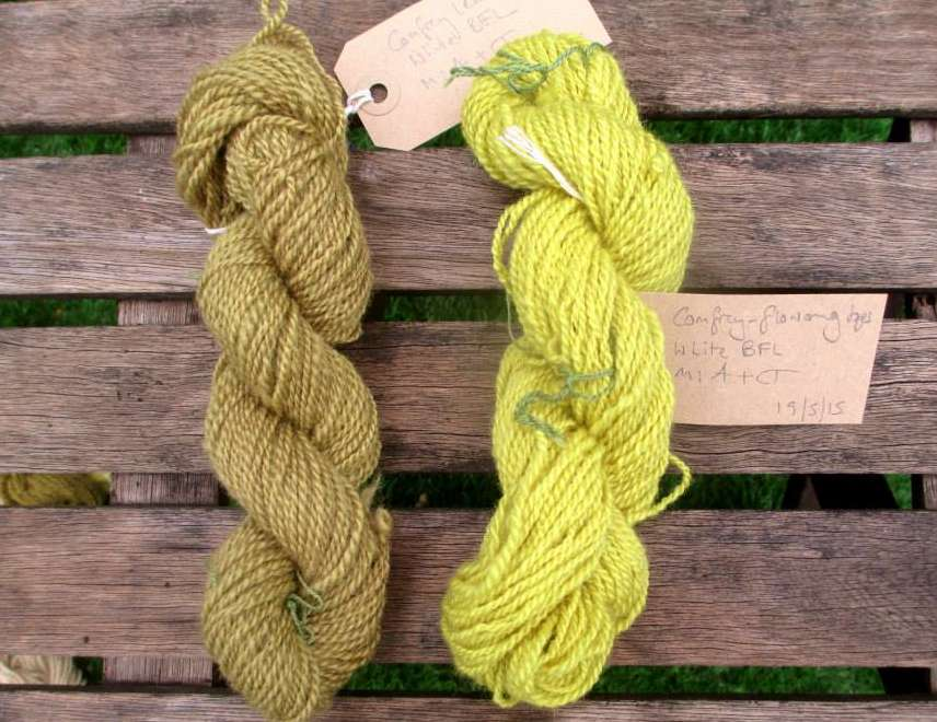 Skeins of Bluefaced Leicester handspun yarn dyed with comfrey.