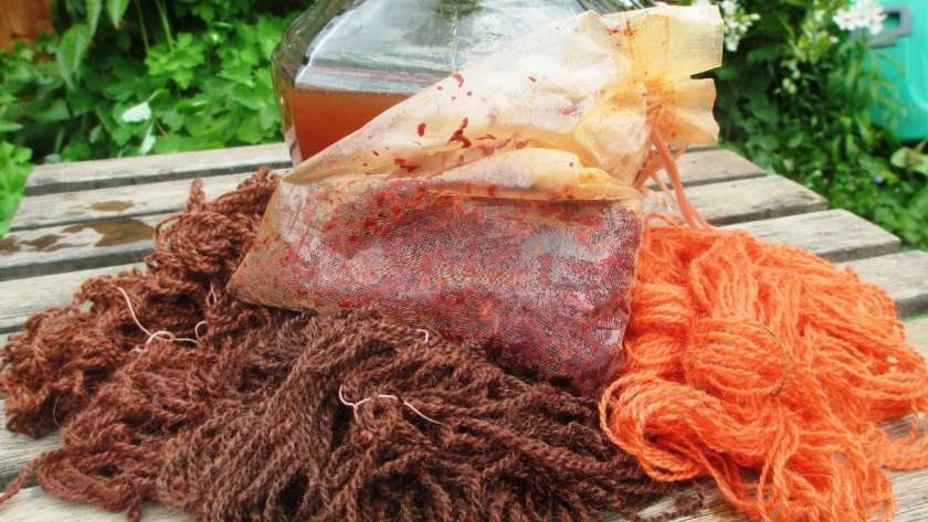 Solar dye pot 2 with the madder in its bag and the yarns showing the colours