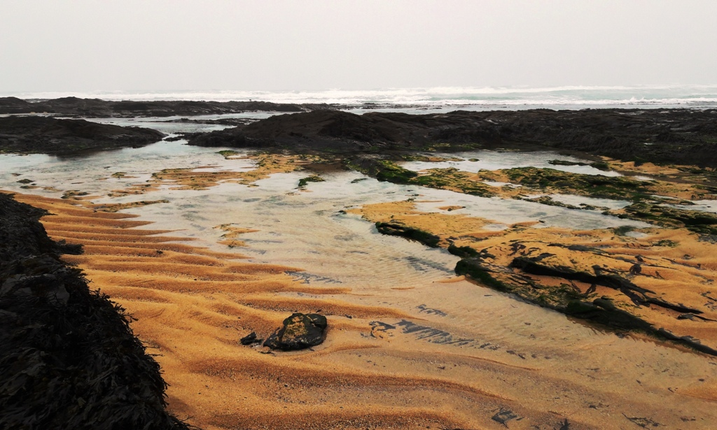 Rock pools and sand at Constantine Bay (c) Madeleine Jude Ltd