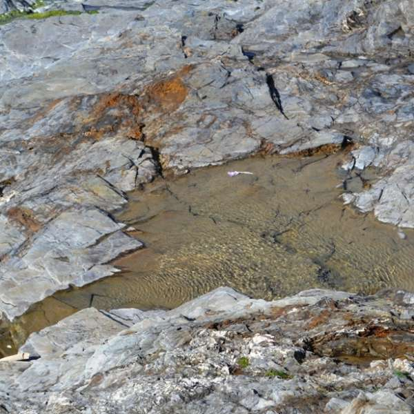 Rock pools at Trevose Head (c) Madeleine Jude Limited 2017