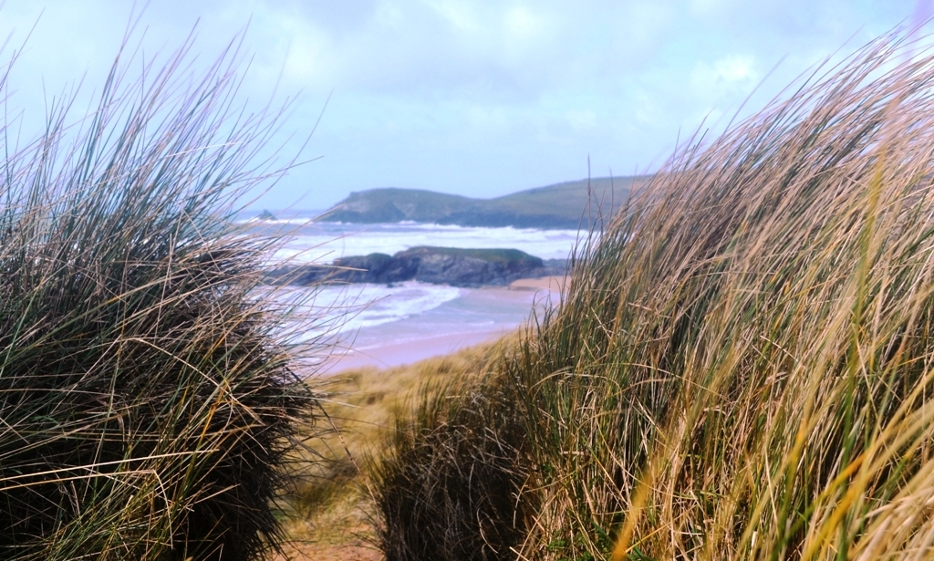 Trevose Head through maram grass on the dunes (c) Madeleine Jude Ltd 2017